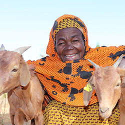 写真:マロウさん、70歳 ヤギを受け取った女性